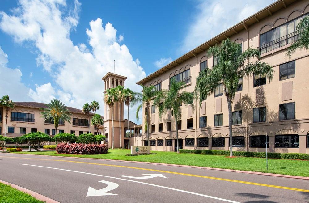 commercial real estate palm trees portfolio